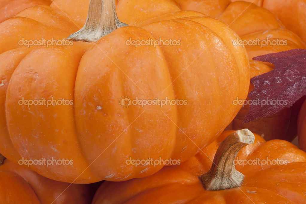 Small orange pumpkins symbolising autumn holidays and used in decorative works. — Stock Photo #4387388