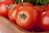 Small red tomatoes — Stock Photo