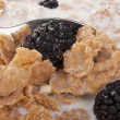Cereals with blackberry — Stock Photo