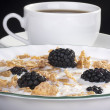 Cereals with blackberry — Stock Photo #4786111
