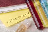 Eksperyment — Zdjęcie stockowe