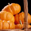Pumpkins — Stock Photo #5262676