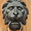 Doorknocker with head of lion — Stock Photo
