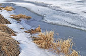 Melting ice at riverbank — Stock Photo