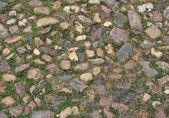 Stone pavement background — Stock Photo