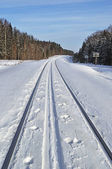 Railroad and ski track in winter forest — Stok fotoğraf