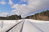Railroad in winter forest — Stockfoto