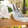 Wedding — Stock Photo #5078700