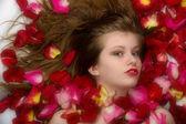 Beautiful long hair girl lying in rose petals — Stock Photo