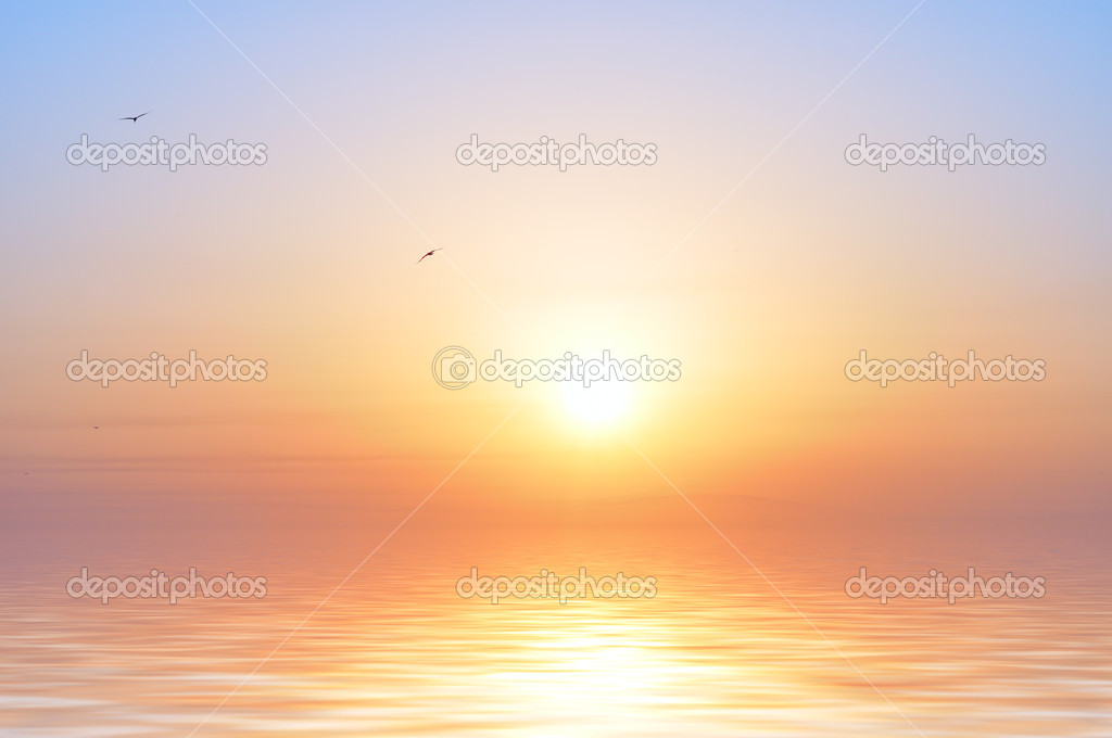 Ocean sunrise and birds  Stock Photo #4521443