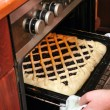 Woman is cooking a blueberry pie in home oven — Stock Photo #4684034
