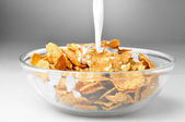 Milk stream flowing to the bowl with corn flakes — Stock Photo