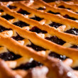 Fresh blueberry pie — Stock Photo