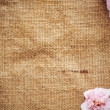 Blank Grungy Canvas Background — Stock Photo