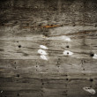 Wooden texture — Stock Photo #3991952