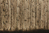 Holz-textur — Stockfoto