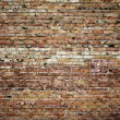 Brick wall — Stock Photo #4270233