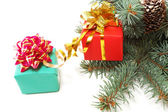 Gifts on fur-tree branches — Stock Photo