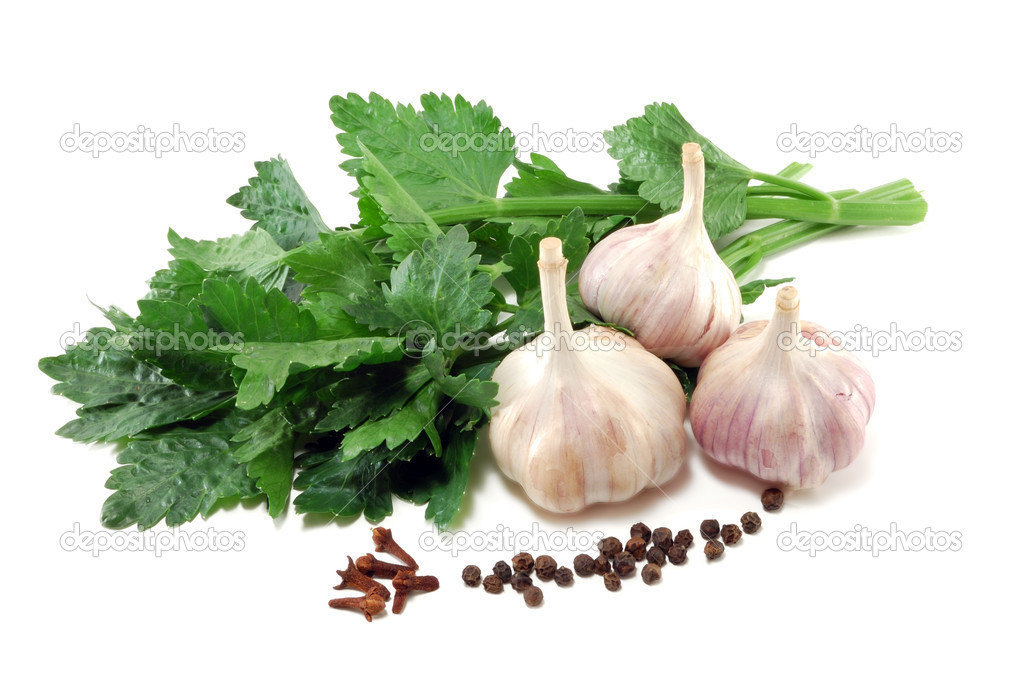 Garlic with leaves of a celery and spices is isolated on a white background  Stock Photo #4213599
