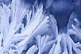 Vinter is mönster — Stockfoto