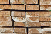 Stack of woods — Stock Photo