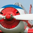 Front view of small plane — Stock Photo