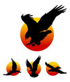 Flying Eagle Silhouettes — Stock Vector