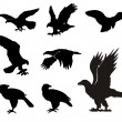 Eagle silhouettes — Stock Vector