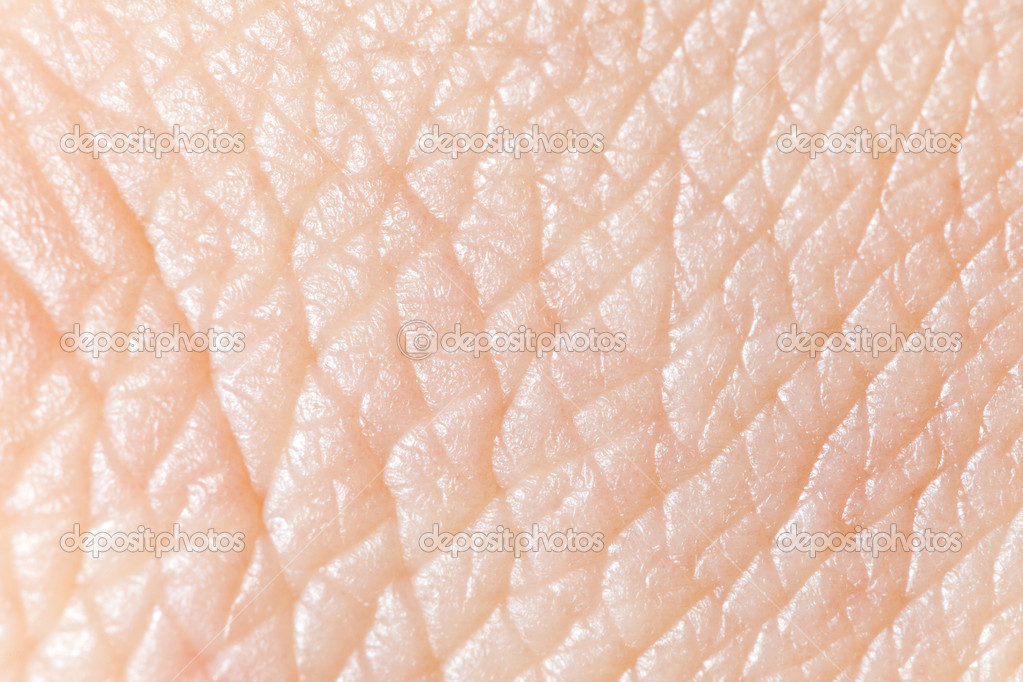 Human skin super macro texture.  Stock Photo #4698212