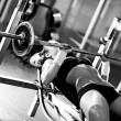 Stock Photo: Young woman weight training