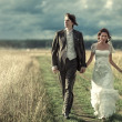 Wedding couple walking — Stock Photo #5040441