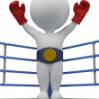 3d small - boxer the champion — Stockfoto