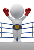 3d small - boxer the champion — Stock Photo