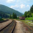 Stock Photo: Railway tracks