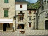Stare miasto kotor, czarnogóra — Zdjęcie stockowe