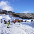 Stock Photo: Ski track in Carpathian mountains, Ukraine