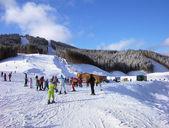 ウクライナ カルパティア山脈でスキー トラック — ストック写真