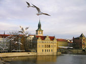 Vltava river embankment, Prague — Stock Photo