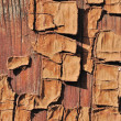 Stock Photo: Painted wood
