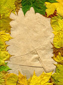 Leaves and paper — Stock Photo