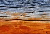 Wooden texture — Stok fotoğraf