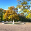 Autumn park view — Stock Photo