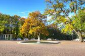 Autumn park view — Stock Photo