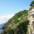 Italy. Cinque Terre. Manarola village — Stock Photo