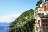 Italy. Cinque Terre. Manarola village — Stock Photo