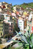 Italy. Cinque Terre. Riomaggiore village — Stockfoto