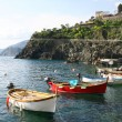 Italy. Cinque Terre region. Manarola. Boats — Stock Photo