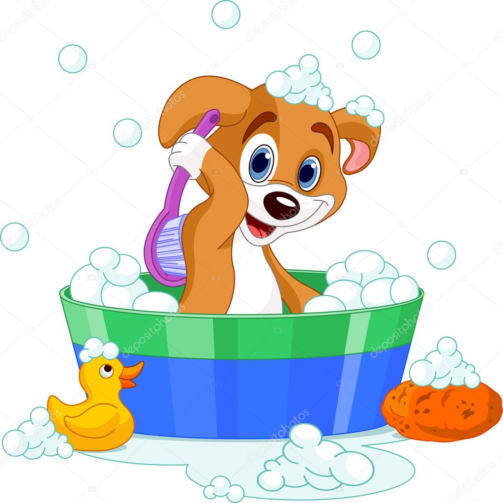 Very cute  dog having a soapy bath — Stock Vector #4295506