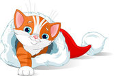 Kitten getting out from Santa Hat — Stock Vector