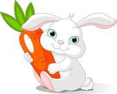 Rabbit holds giant carrot — Stock Vector